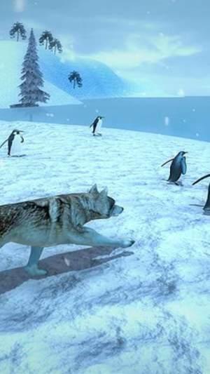 北极狼模拟器游戏破解版下载